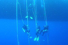 Divers decompress over the Forbes